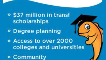 workshop-scholarships